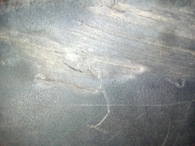 Накладка декоративная (молдинг) задней правой двери Iveco Daily 4 286509 preview-1